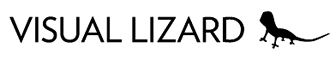 Visual Lizard Inc Logo